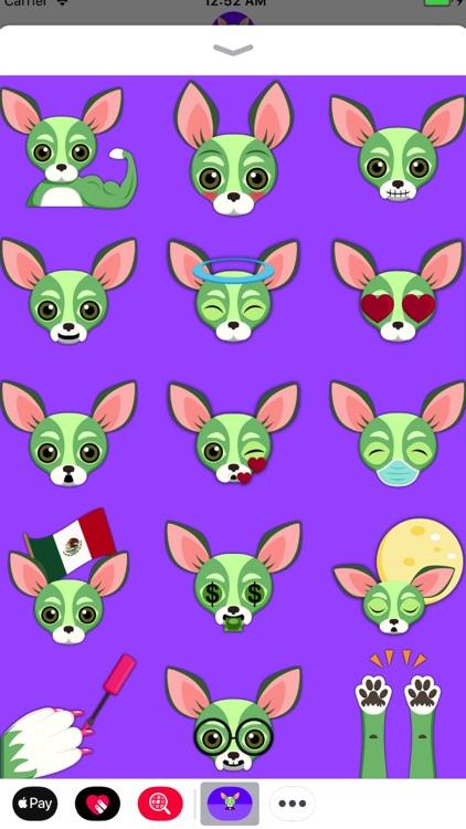 Saint Patrick's Day Chihuahua screenshot-3