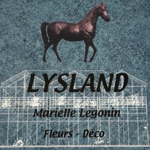 Lysland Fleurs