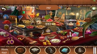 Hidden Objects:Big Home Mania screenshot four