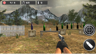 Shooting practice with bottles screenshot one