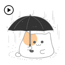 Animated So Cute Cat Sticker