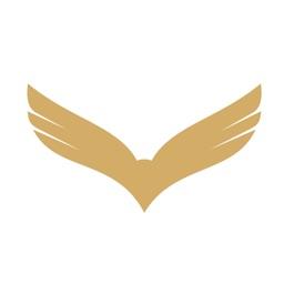 Time Hawk