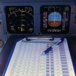 Flight Briefing
