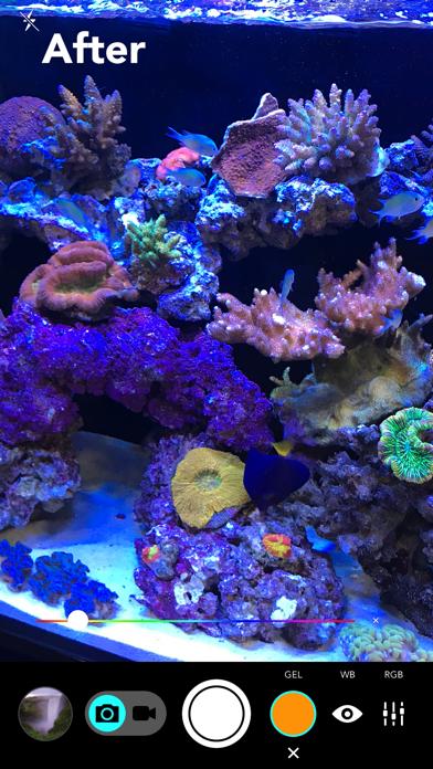 Aquarium Cameraのおすすめ画像2