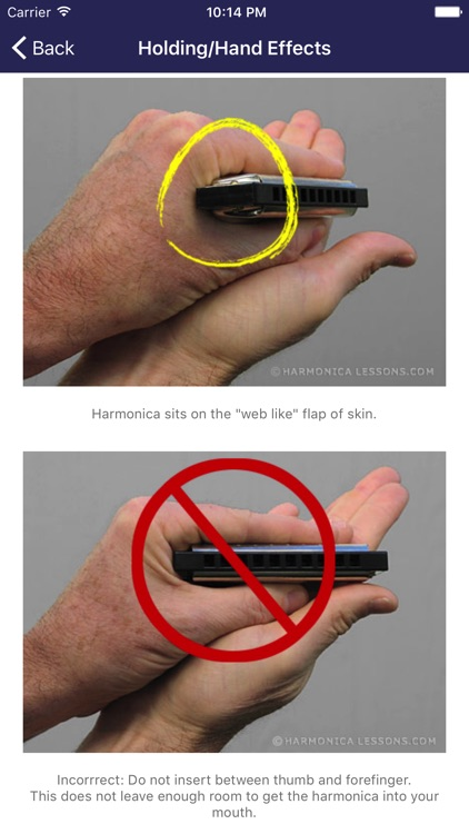 Harmonica Beginner Lessons screenshot-1