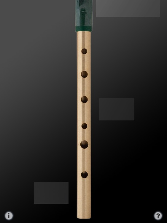 Tin Whistle Pro screenshot-3