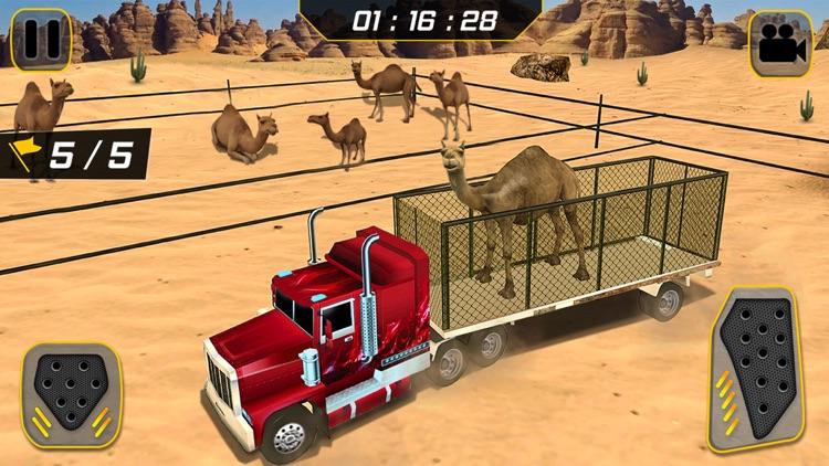 Eid Camel Truck Transport