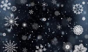 Snowfalls HD