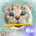 小さな子猫 プレスクール