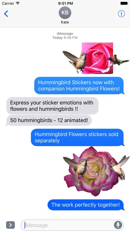 Hummingbird Sticker Pack screenshot-0