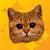 Meow Pro - Cat Sounds