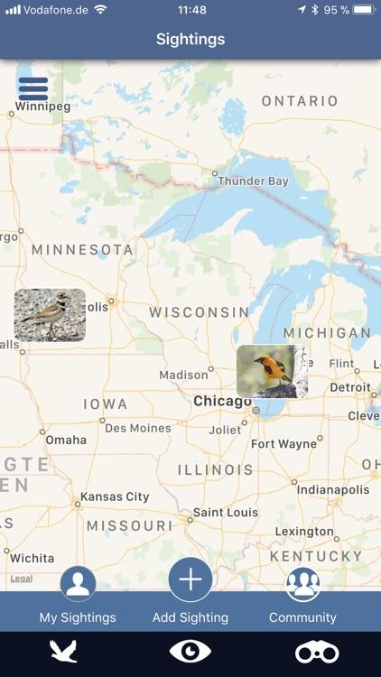 Bird Id USA backyard birds screenshot-9