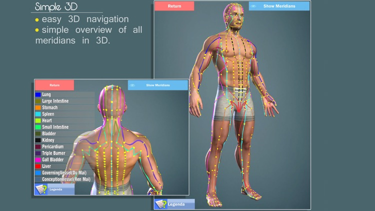 Easy Acupuncture 3D -FULL screenshot-3