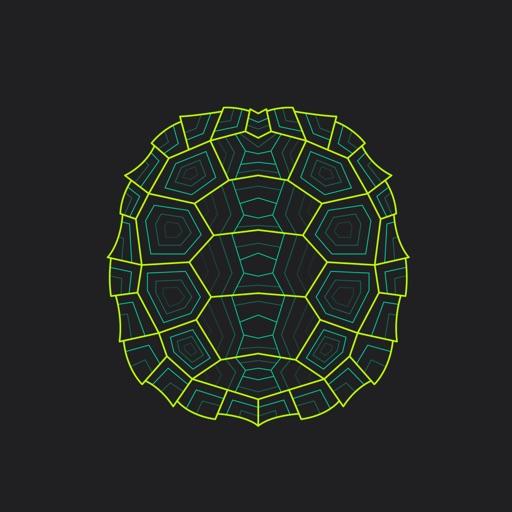 Turtle Wrapper