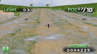 Insect Raceのおすすめ画像4