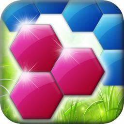 Drag Hexa Puzzle