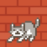 Codes for Drop Cats Hack