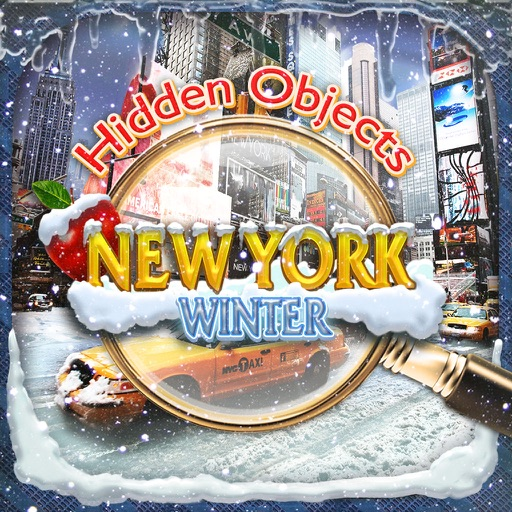 Hidden Objects New York City Winter Object Time
