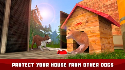 Japanese Dog House Adventure screenshot two