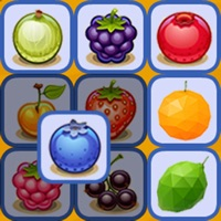 Codes for Fruit Puzzle Hack