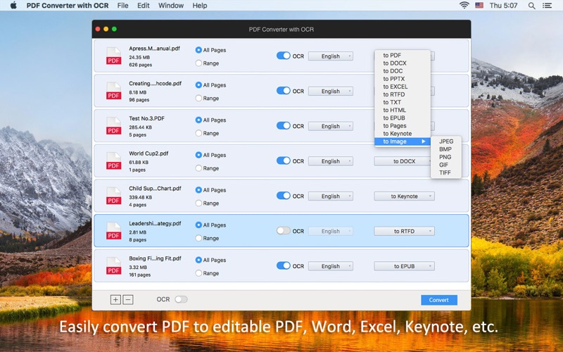 PDF Converter with OCR Screenshots