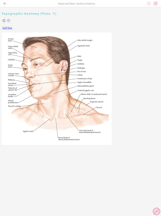 Netters Anatomy Atlas Bundle On The App Store