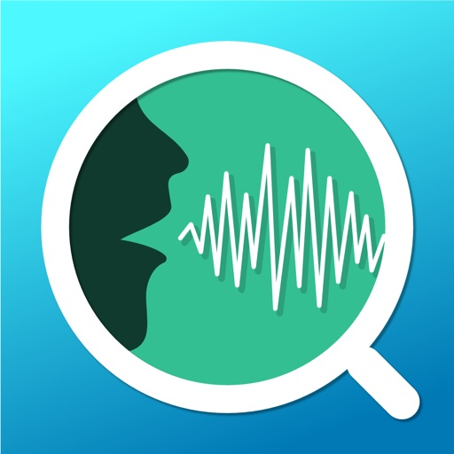 Voice Analyst - monitor your pitch & volume