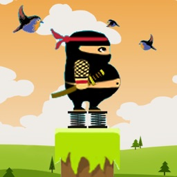 Fat Ninja Jump-cool fun games