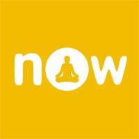Now: Meditation