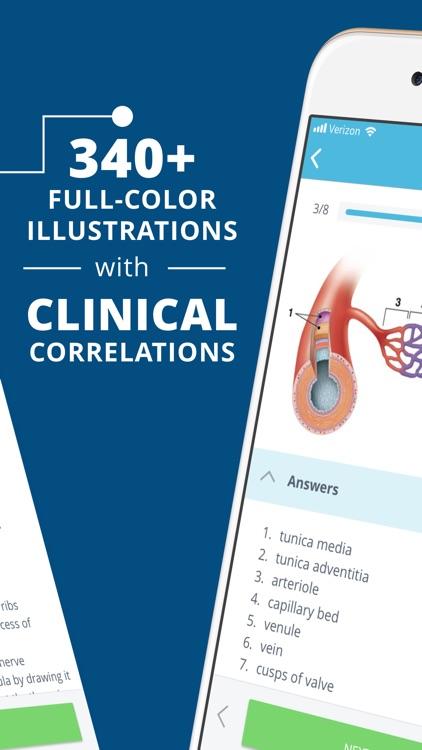 USMLE Clinical Anatomy Quiz by Higher Learning Technologies