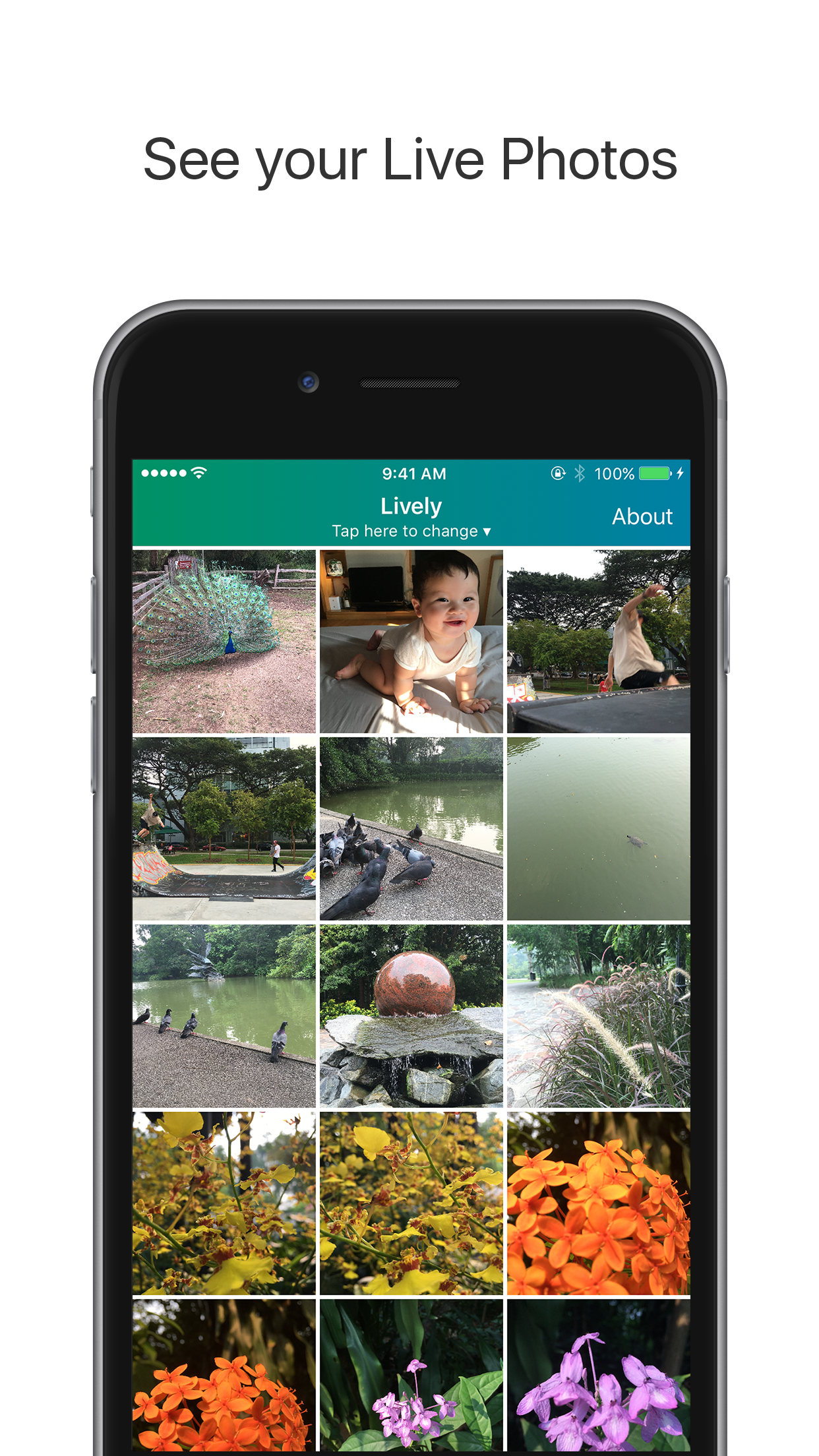 Lively - Live Photo to GIF Screenshot