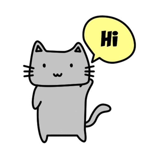 The Grey Cat - cute kitten pet