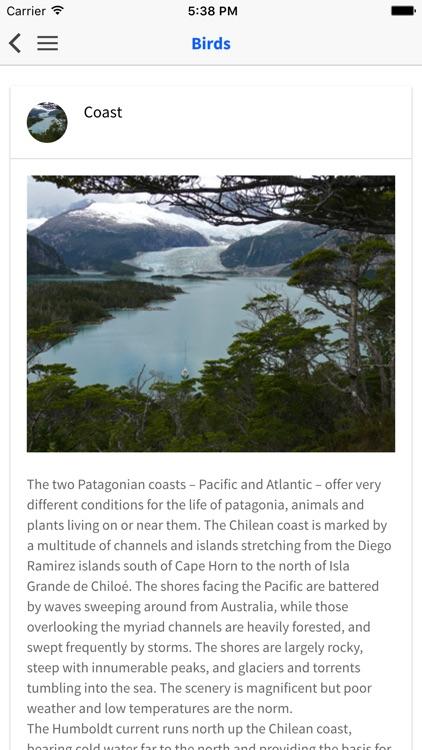 Birds of Patagonia screenshot-4