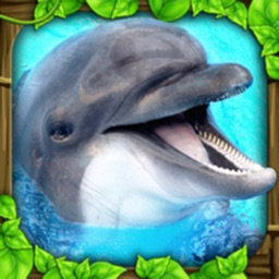 Dolphin Simulator By Gluten Free Games