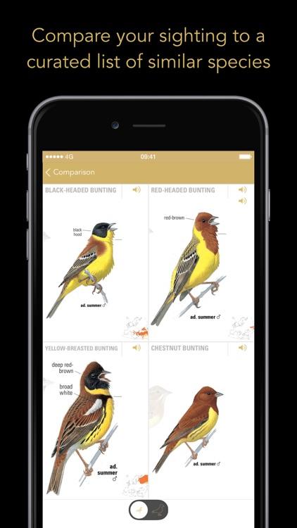 Collins Bird Guide screenshot-4