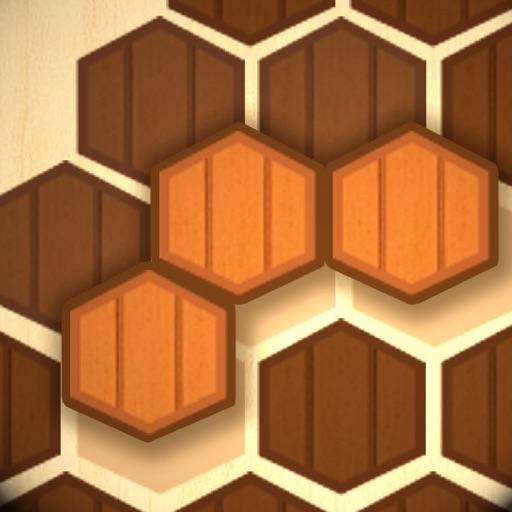 Wooden Hexa Puzzle