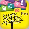 FilesOnTree Pro - Tree File Explorer