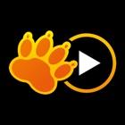 TVLeão Play icon