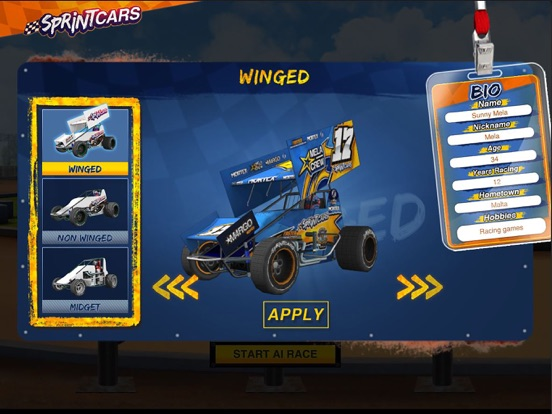 Dirt Trackin Sprint Cars screenshot 6