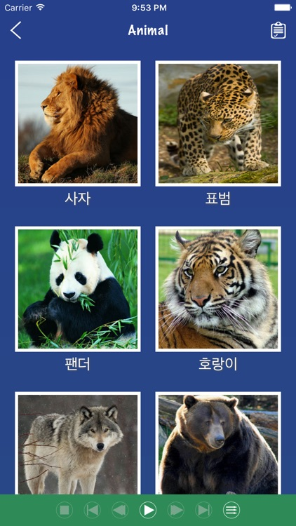 Korean Word Flashcards Learn screenshot-1