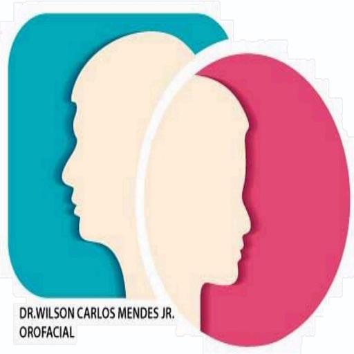 Wilson Carlos Mendes Jr