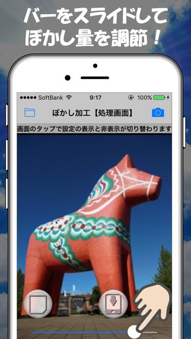 写真のぼかしやモザイク加工ができる画像処理アプリ紹介画像2