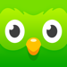 178.多邻国 (Duolingo)