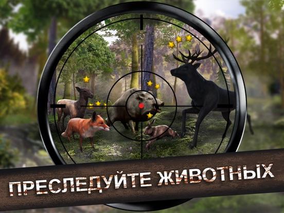 Игра Wild Hunt: Охота на животных
