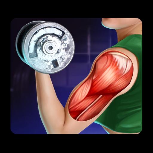 人体肌肉解剖学3D