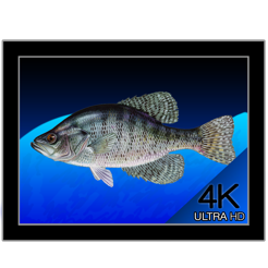 aquarium 4k live wallpaper on the mac app store