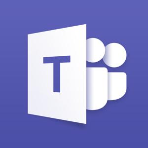 Microsoft Teams Business app