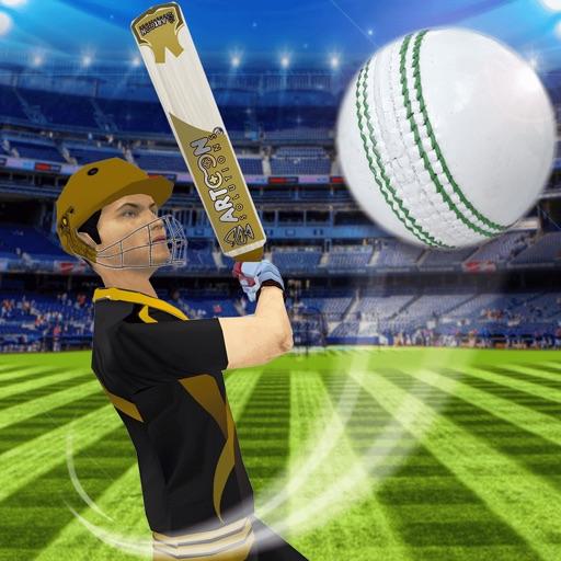 Cricket Multiplayer