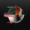 Sight Selector Lite