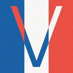 Les Verbes - French Verbs